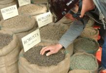 thị trường cà phê và hồ tiêu